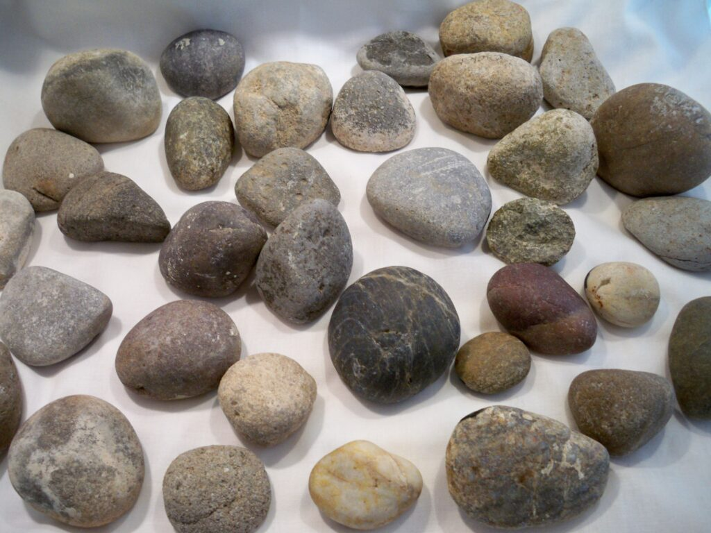 painted stones, tuzi williams, stone bird