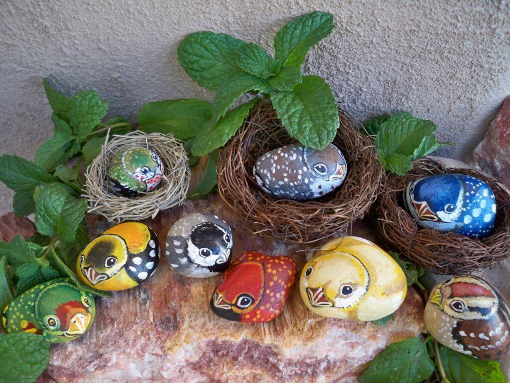 painted rock, stone bird, tuzi williams