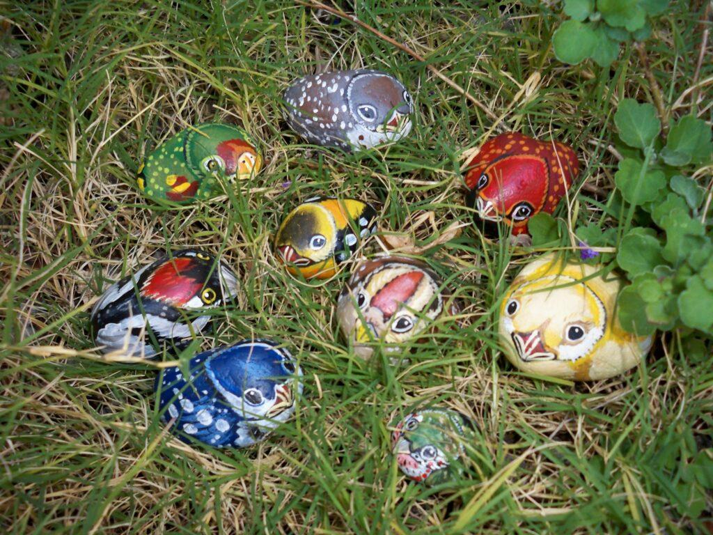 painted rock, painted stone, tuzi williams, bird