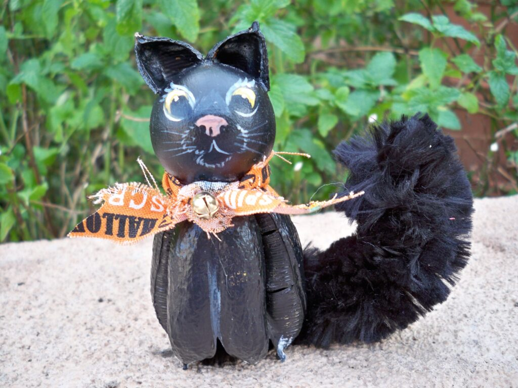 yucca pets, tuzi williams, halloween cat