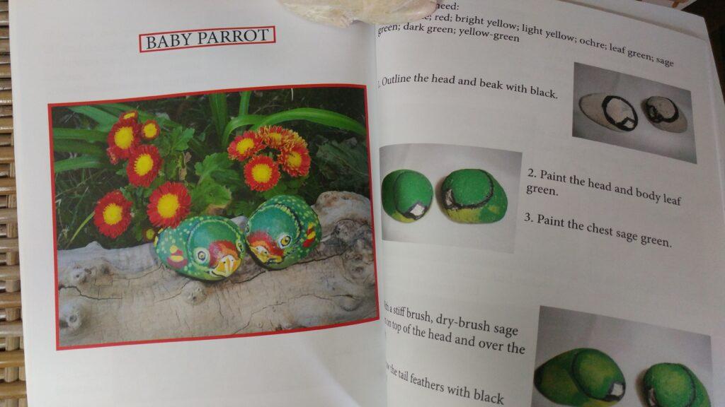 painted rock, bird, parrot, tuzi williams
