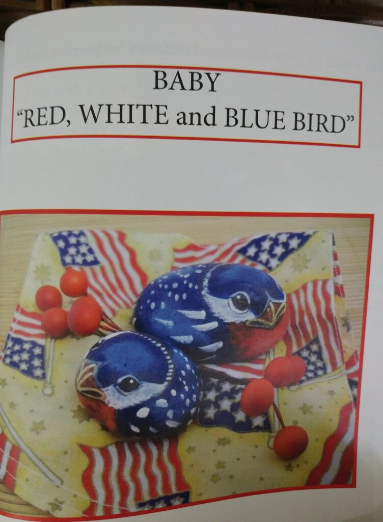 bluebird, painted rock, bird, tuzi williams