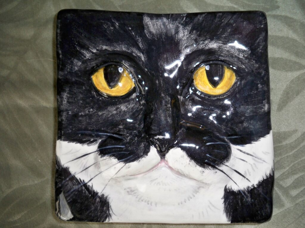 tuzi williams, cat, tile