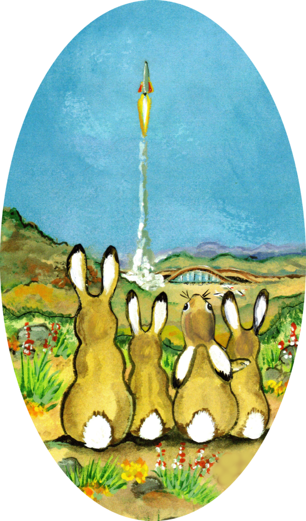 rabbit bunny jackrabbit spaceport southwest rocket