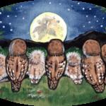 owl night moon owlet