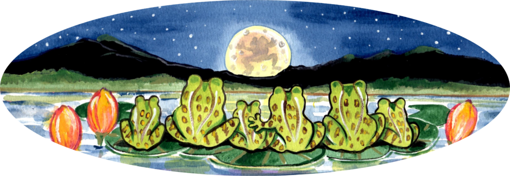 frog pond night moon lily pad
