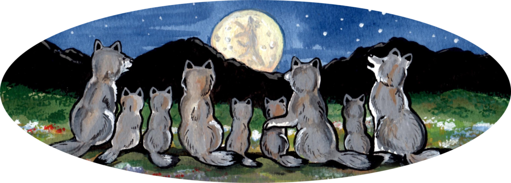 wolf wolves howling moon night