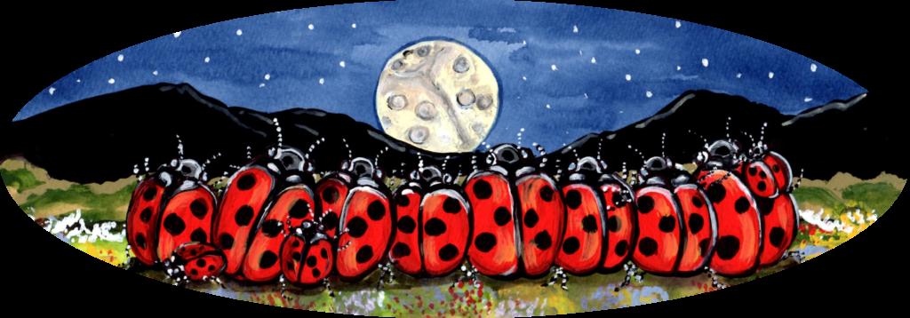 ladybug family night sky moon red