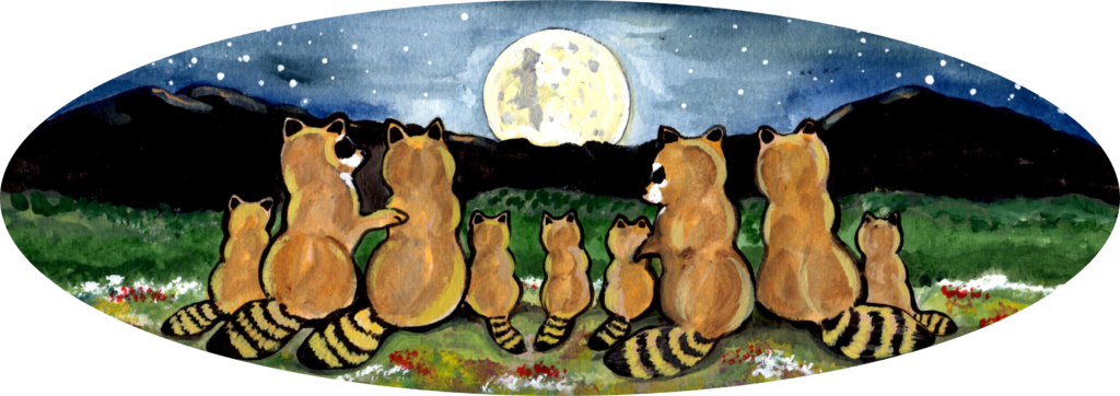raccoon coon family night moon