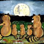 raccoon coon family night moon