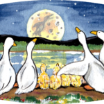 duck duckling pond lake night moon
