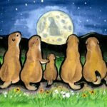 prairie dog ground squirrel night moon