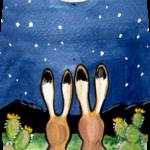 rabbit bunny jackrabbit moon desert